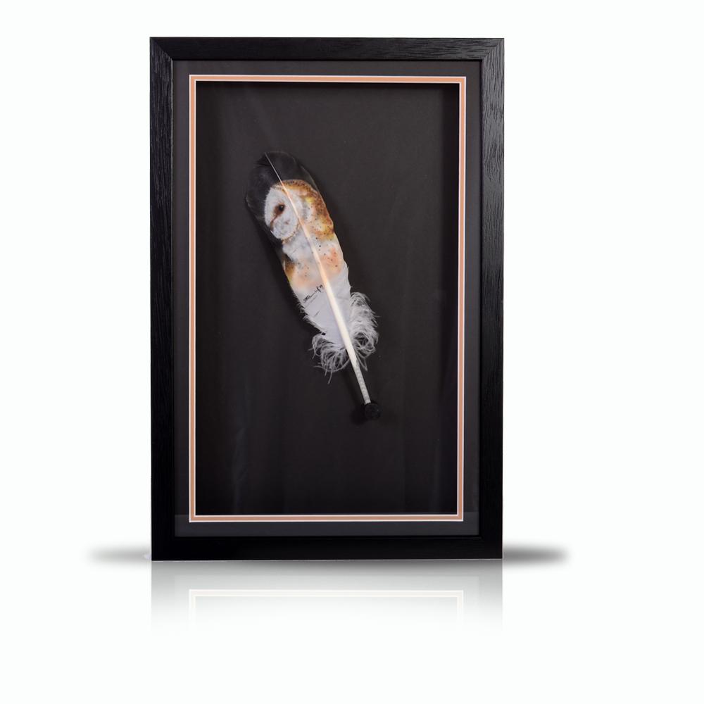barn-owl-portrait